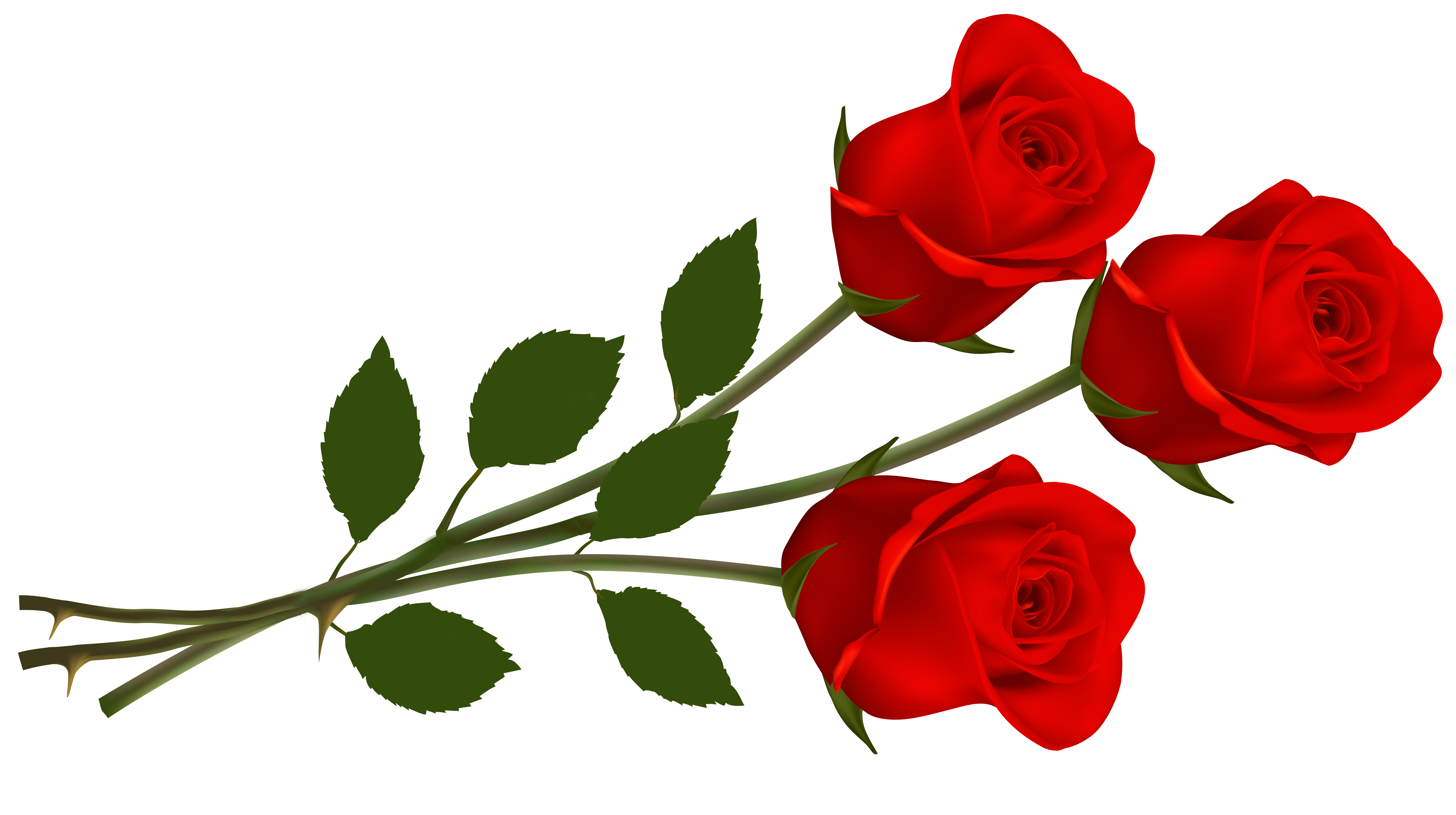 Roses Clip Art 7