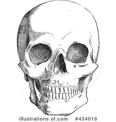 Royalty-Free (RF) Skull Clipart Illustration #434016 by BestVector