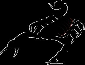 Scorpion Clip Art