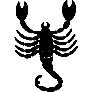 Scorpion clipart 4 about terms wikiclipart