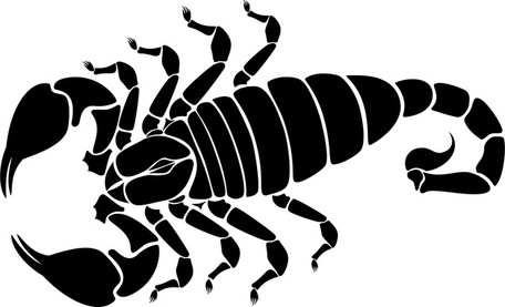 Scorpion Cliparts #248515