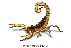 . hdclipartall.com scorpion - Digital illustration of an scorpion inked