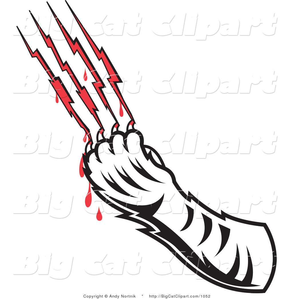 Big Cat Vector Clipart of a Tigers Claw Drawing Blood from Scratches