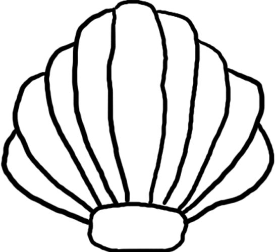 Sea Shells Clip Art - Clipart library