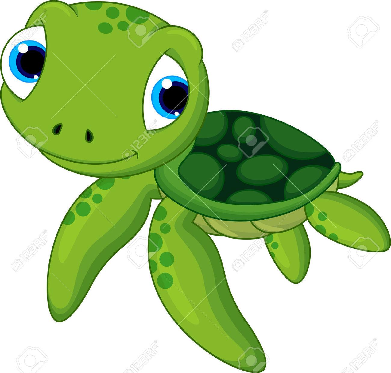 sea turtle: baby sea turtle .