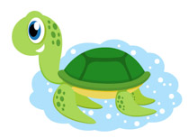 Green sea turtle clipart. Size: 65 Kb
