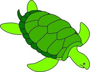 Sea Turtle Clipart Image: Green sea turtle