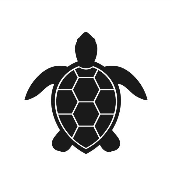 Sea turtle icon vector art il - Sea Turtle Clipart