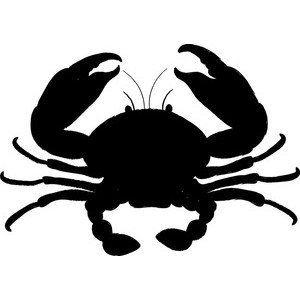 Seafood Clipart Image