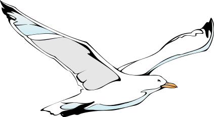 Clipart Seagull Clipart