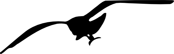 . hdclipartall.com free vecto - Seagull Clipart