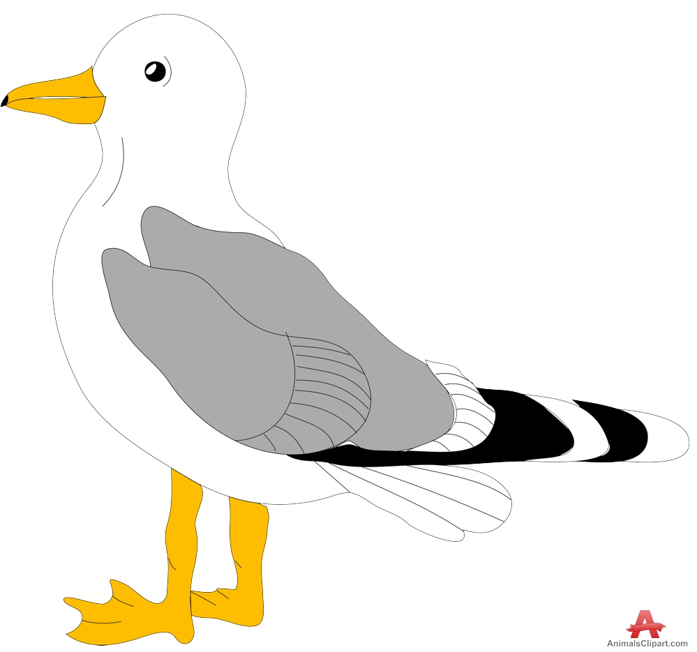 Seagull clipart simple bird #6