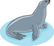 Seal Size: 34 Kb