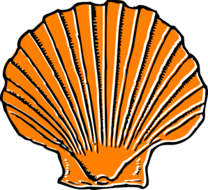 Seashell clip art free printable free clipart images