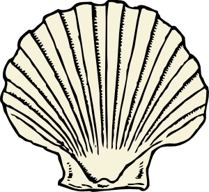Seashell clipart black and white free clipart images 3