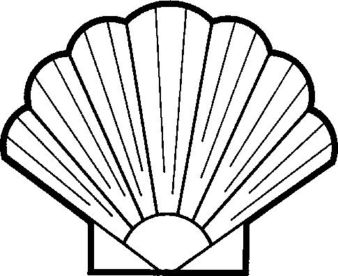 Seashell shell clipart image