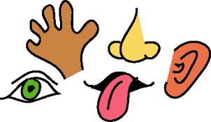 Sense Of Hearing Black Clipart