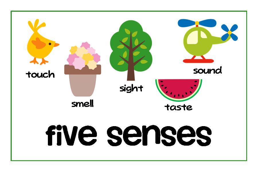 Senses Clipart Clipart Panda Free Clipart Images