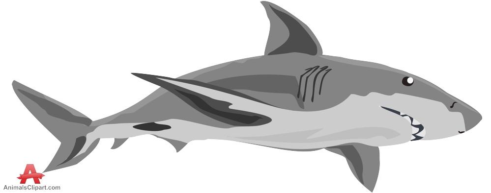 Gray shark clipart free clipart design Shark Clipart