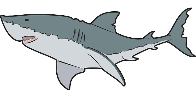 Pleasing Free Shark Clipart 90 On History Clipart with Free Shark Clipart