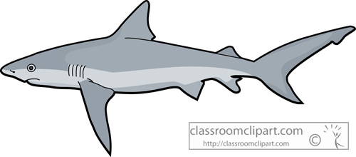 Shark clip art images free clipart images 4