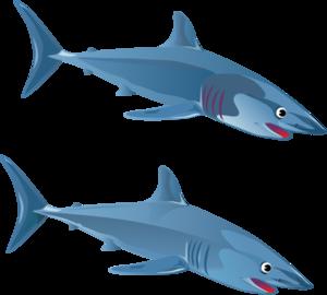 Sharks Clipart u0026amp; Sharks Clip Art Images - ClipartALL clipartall.com