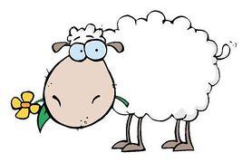Sheep clipart and illustration 7 sheep clip art vector