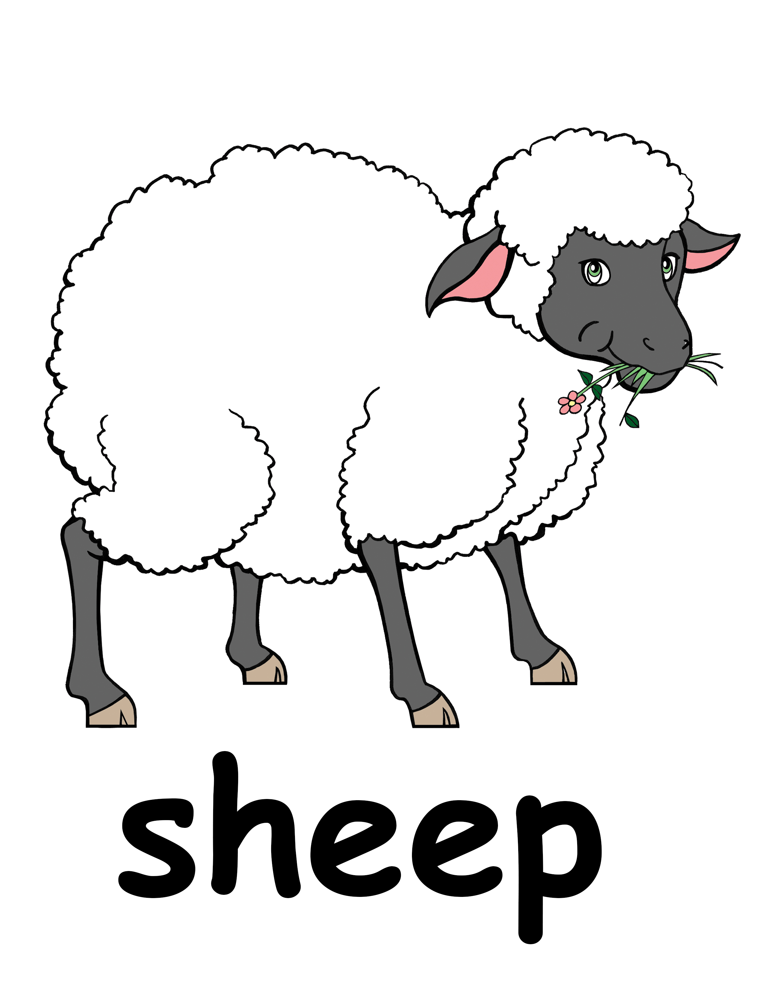 Sheep Clipart #17206