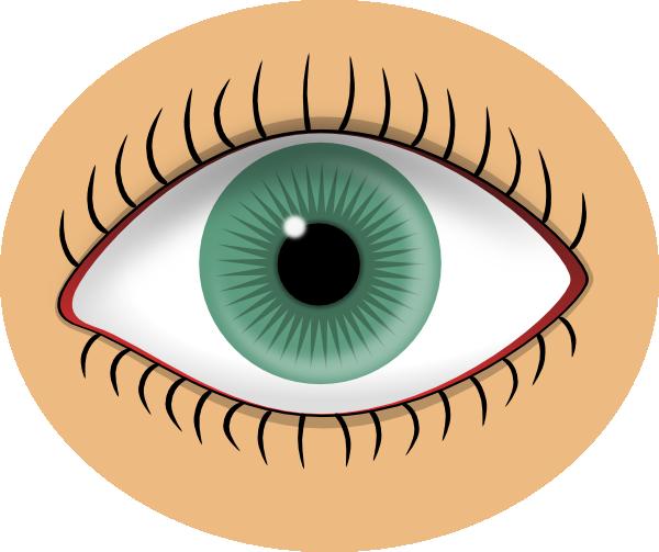 sight clipart