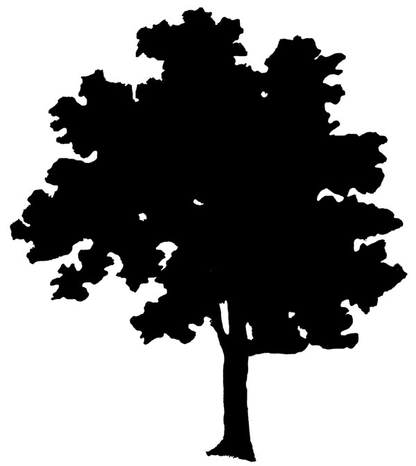 Clipart Silhouette Tree Clipart