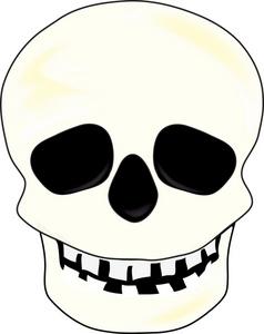 Skull Clip Art Graphics - Skull Clipart