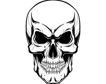 Skull, Human, Silhouette,SVG,Graphics,Illustration,Vector,Logo,Digital, Clipart