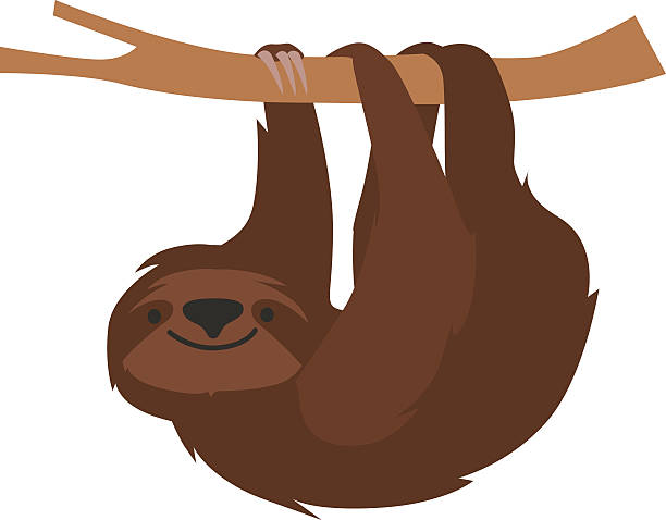 Sloth Clipart