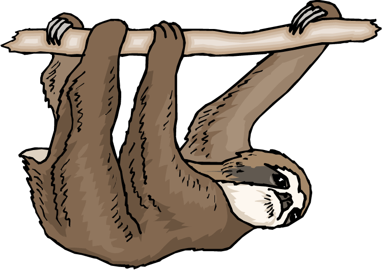 Sloth Clipart #1