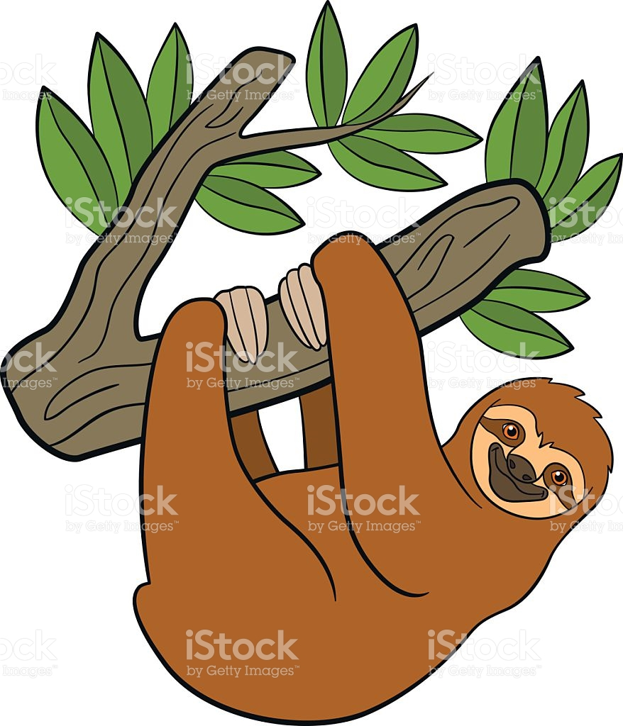 Sloth clipart raSloth Clipartrest animal #2