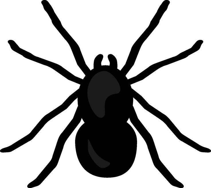 Funny Spider Clipart #1