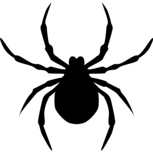 Clipart Spider Clipart