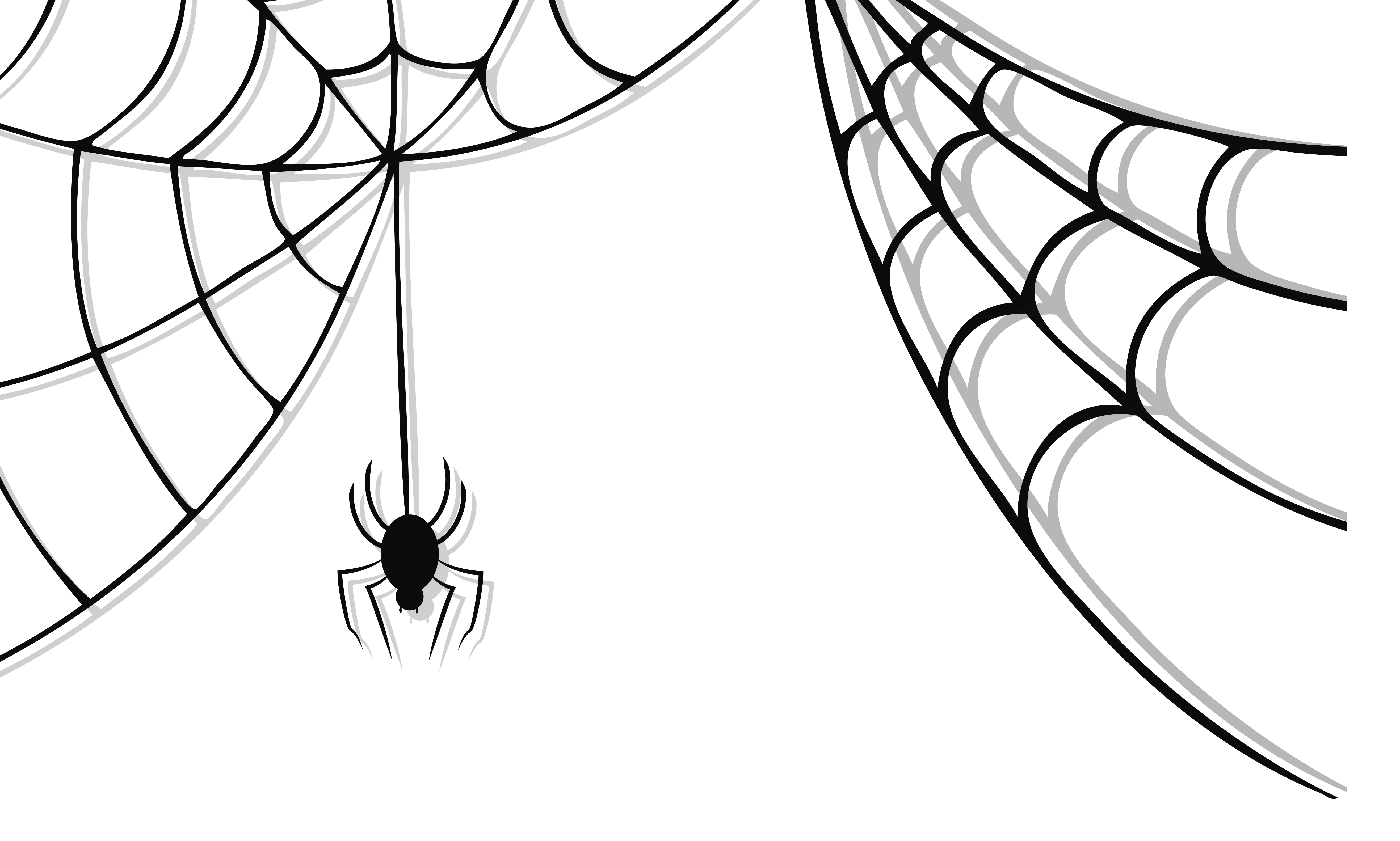 Spider Web Border