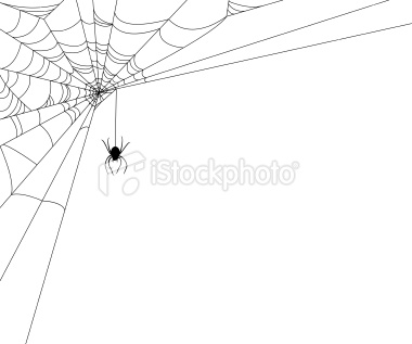 Spiderweb with Spider border element design. Clipping path used for.