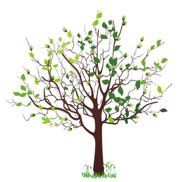Spring Tree with Snowdrops PNG Clipart Picture