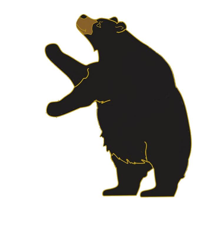 standing black bear drawing