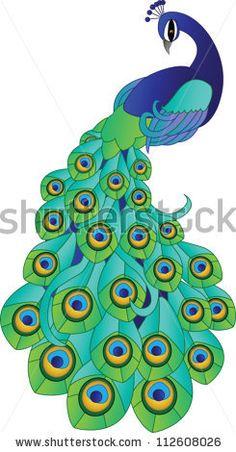 stock vector : Vector Peacock
