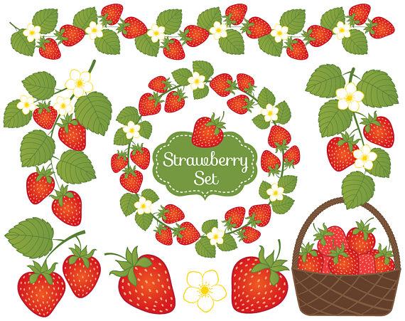 Strawberry Clipart-hdclipartall.com-Clip Art570