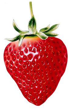 73 best 06 - Strawberry Clipart u0026 Printables images on Pinterest in 2018   Strawberry  clipart, Strawberries and Strawberry fruit