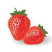 Strawberries; Fresh vector strawberries