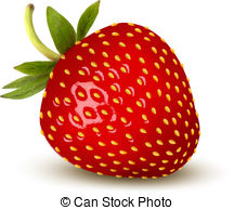 strawberry Drawingby alexroz2/33 Strawberry. Vector.