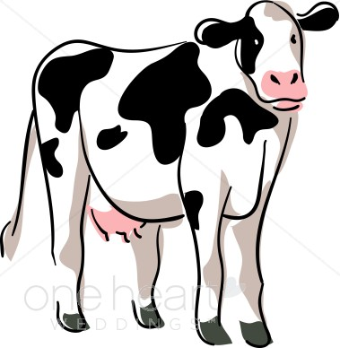 Stylized Cow Drawing Country Wedding Clipart
