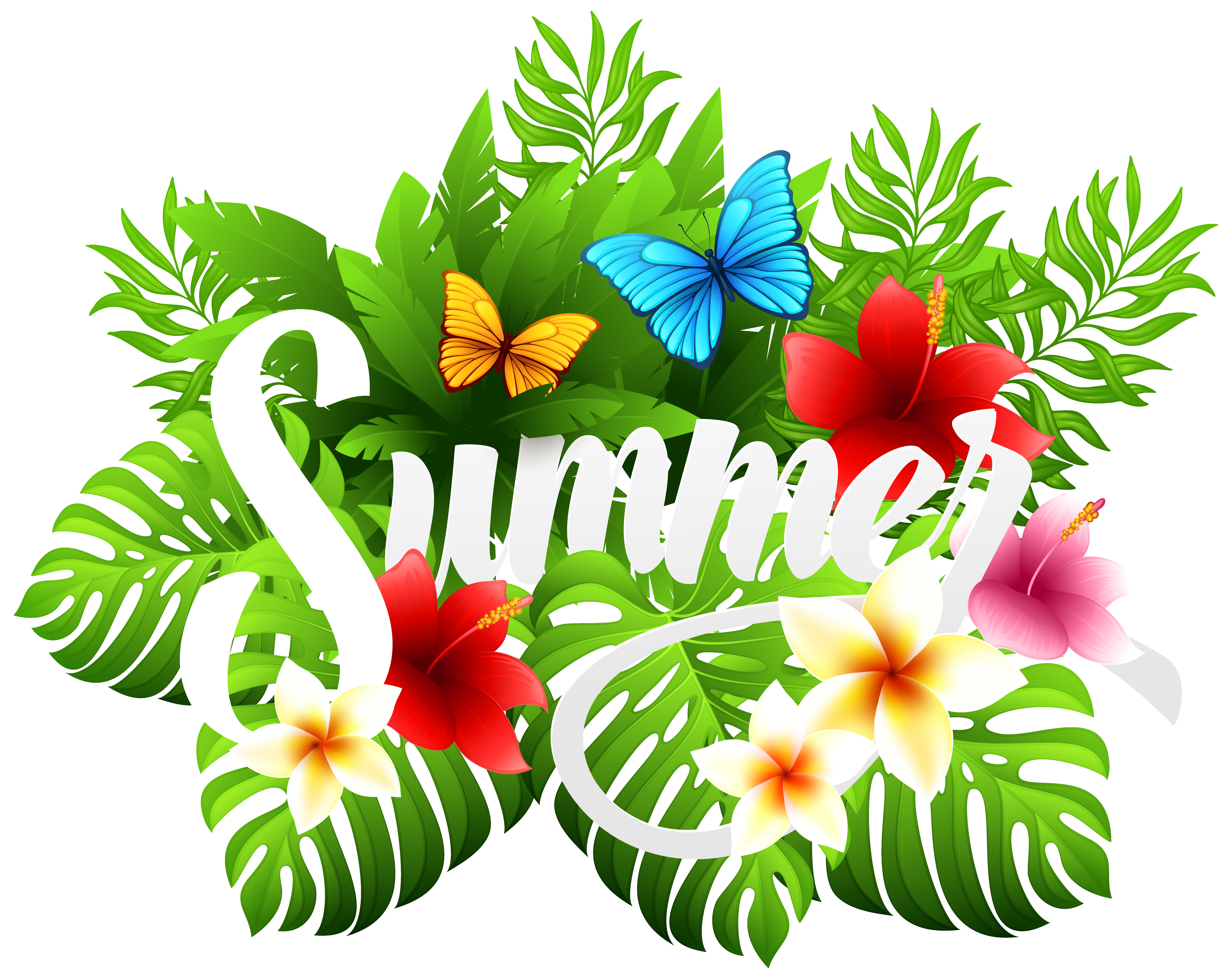 Summer decorative image clipart