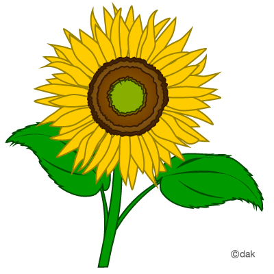 Sunflower clip art clipart free clipart microsoft clipart clipartcow