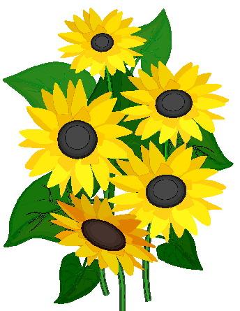 Sunflower clipart 1 image
